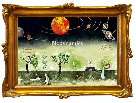 Biodynamic image in gold frame.jpg