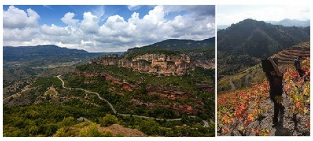 Priorat's rugged terrain and famous terraced vineyards