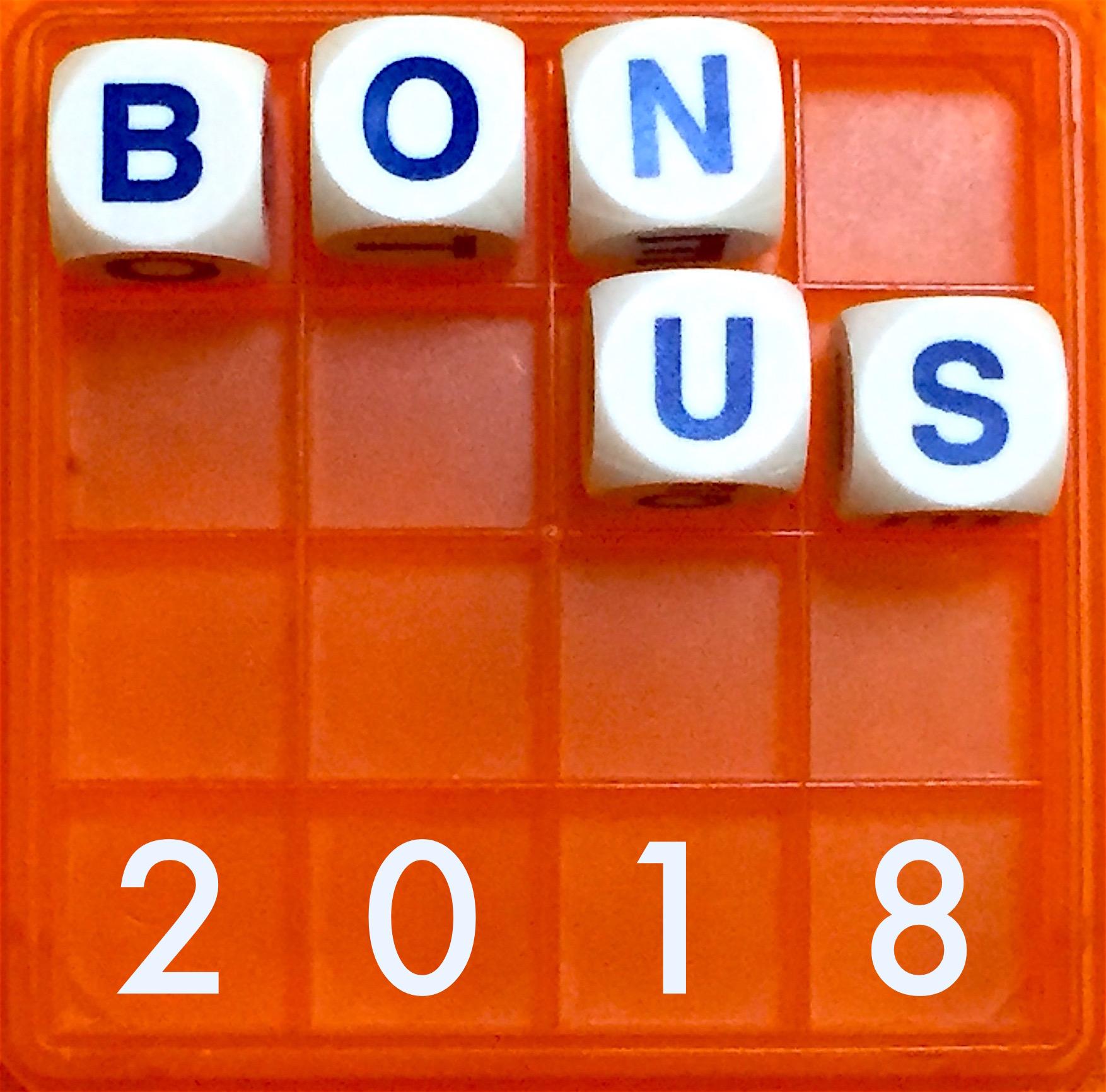 A91 Bonus 2018 logo.JPG