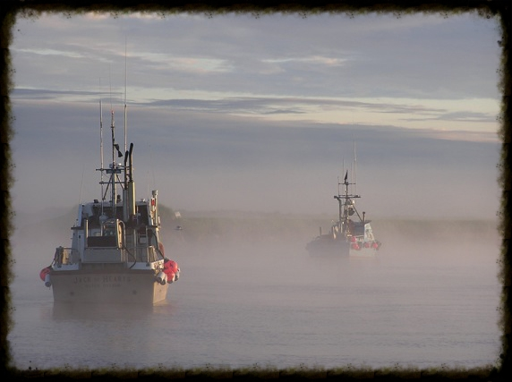 JOH in fog.jpg