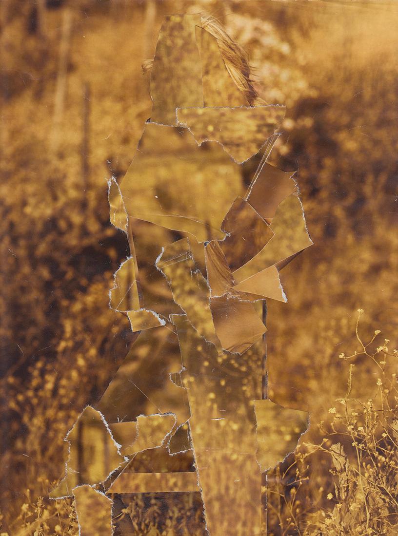 Camouflage-Web-9.jpg