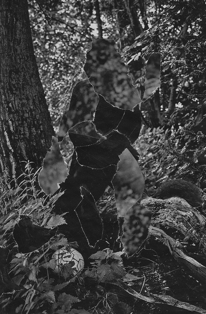 Camouflage-Web-12.jpg