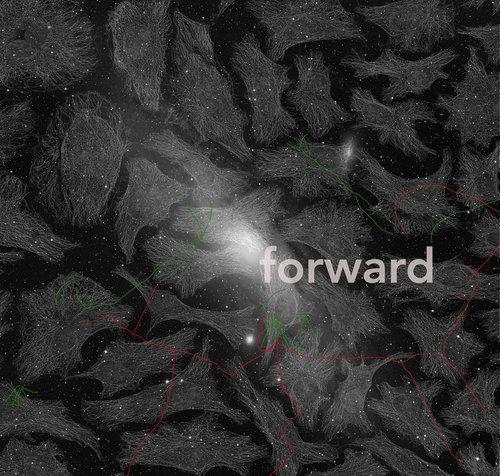 Sonya Dyer,  Forward  (2018). Digital image. Image courtesy of the artist