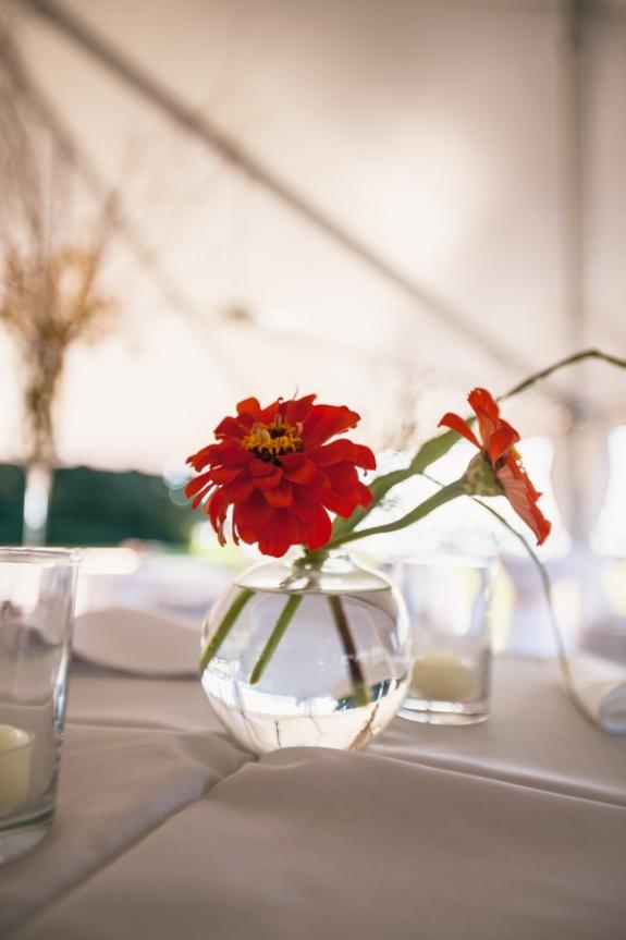 charleston-wedding-venue-island-house