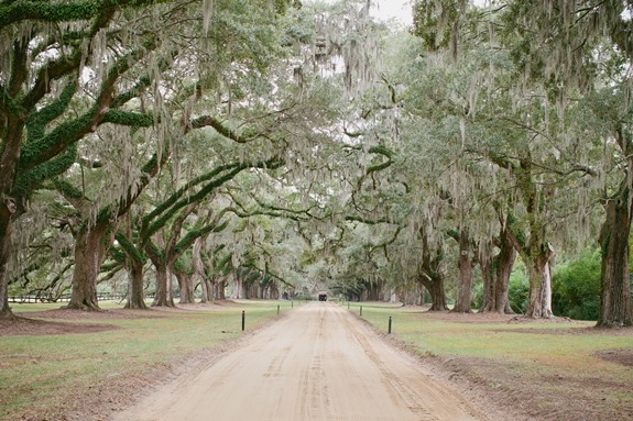charleston-weddings-boone-hall-plantation-4