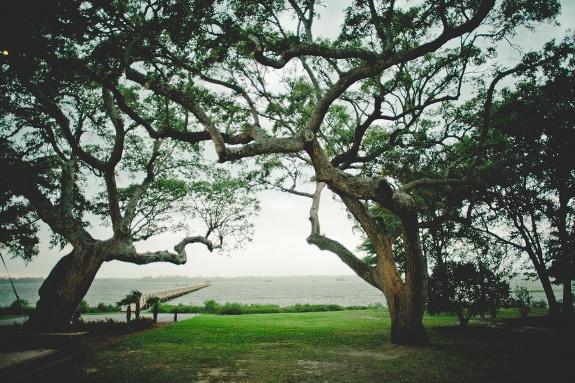 charleston-weddings-lowndes-grove-plantation-30