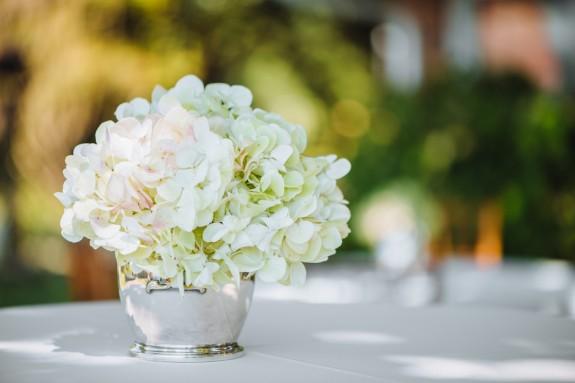 Charleston, Hilton Head, Myrtle Beach, Savannah Weddings