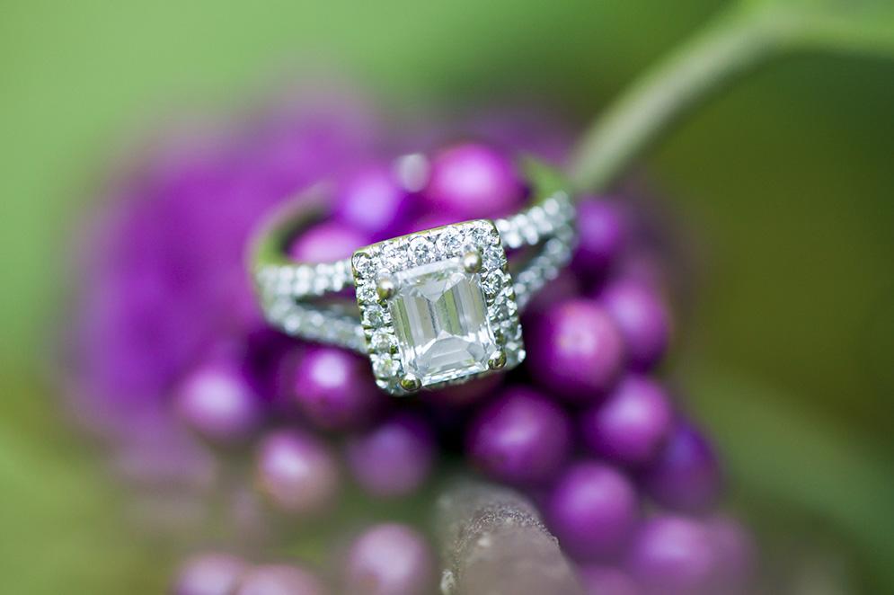 charleston-wedding-engagement-6.jpg