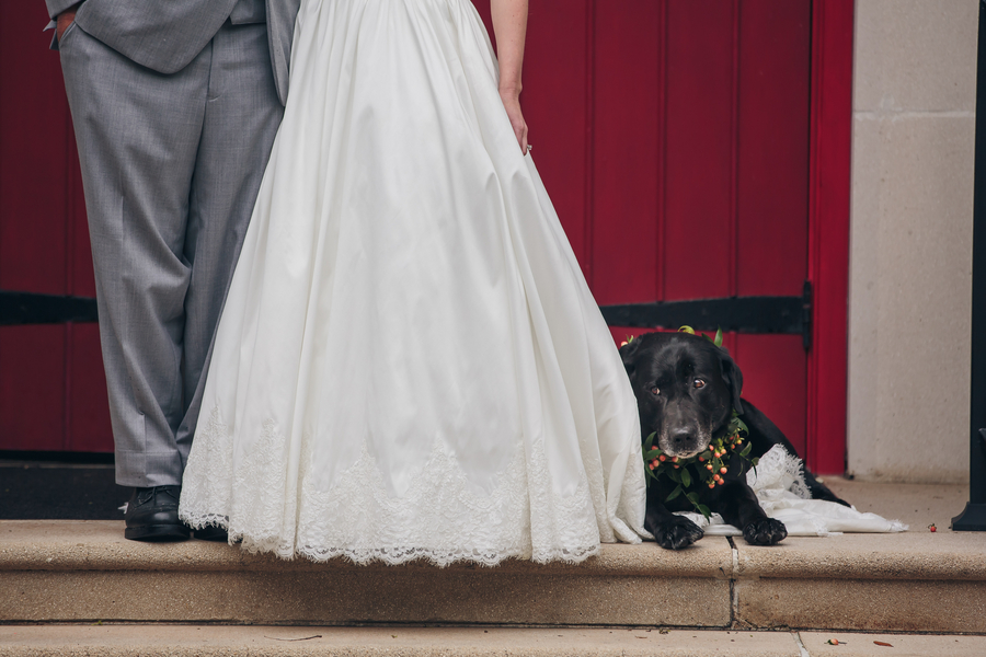 Charleston Wedding Couple and their black lab
