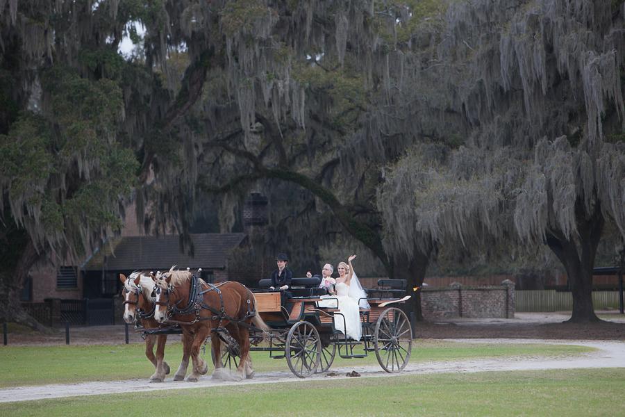 Carriage Ride at Middleton Place Wedding In Charleston, Sc