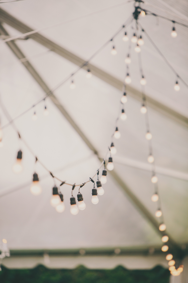 string lights at  Thomas Bennett House wedding in Charleston, Sc by Hyer Images