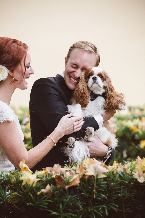 Bride and groom with their dog at Lowcountry wedding by amelia + dan photography