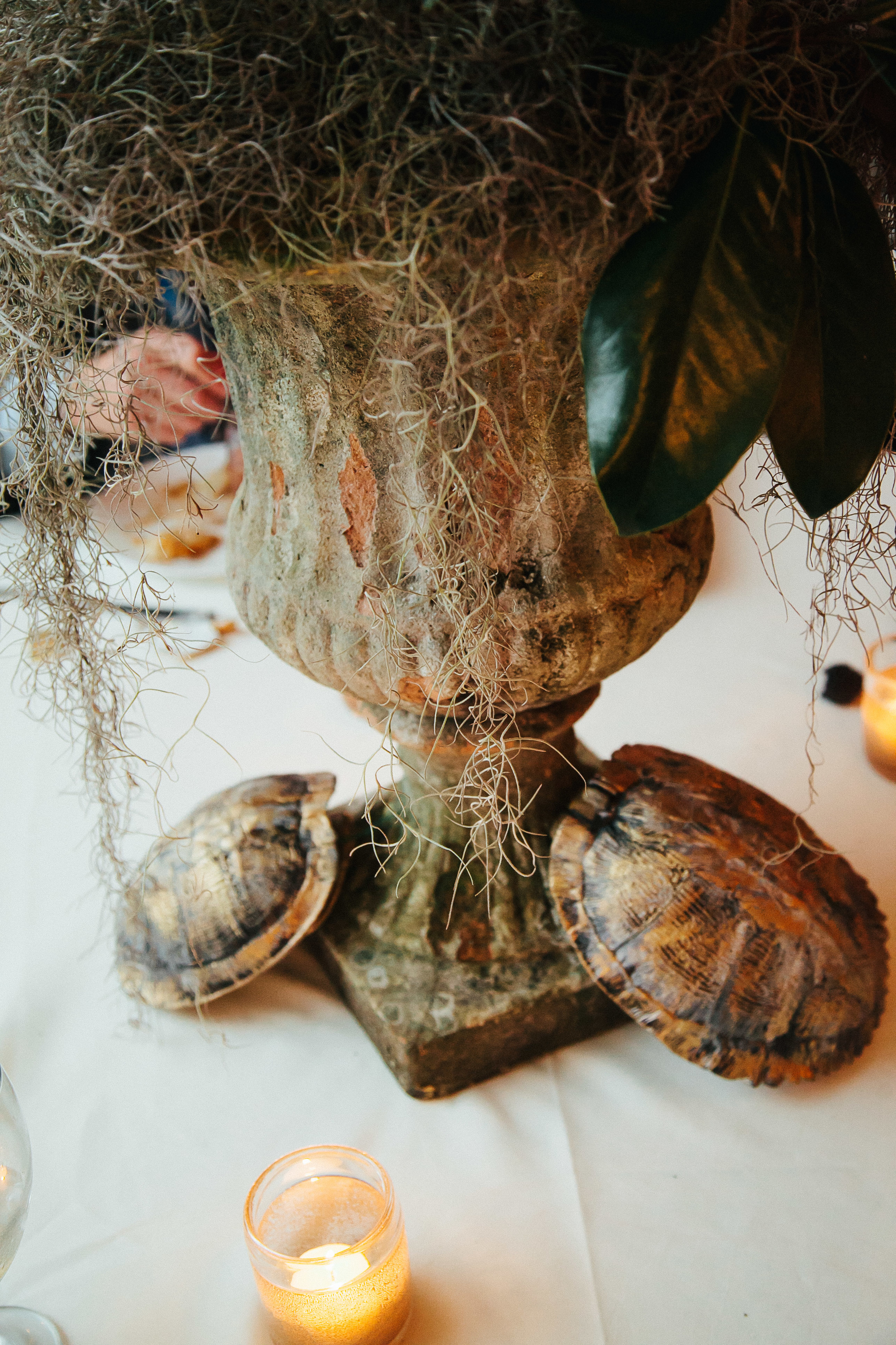 Lush centerpieces of white roses, hydrangeas, spanish moss and pheasant feathers and turtle shells