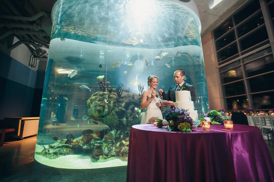 South Carolina Aquarium wedding by Sage Innovations