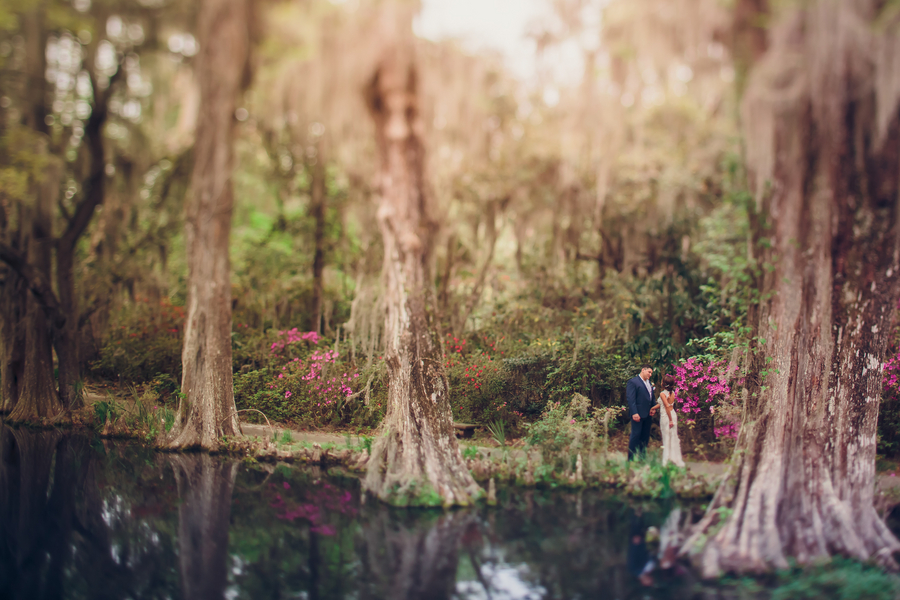 Courtney + Ray's Charleston wedding at Magnolia Plantation and Gardens by Richard Bell Photography