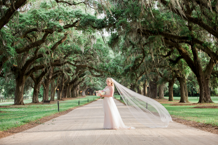 South Carolina Lowcountry bride under the Oak trees