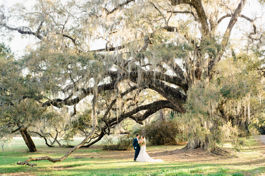 Bride and groom under the oak trees with spanish moss // Charleston wedding photography by Phillip Casey