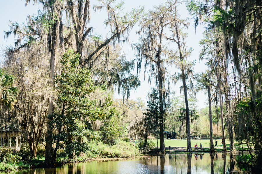 Spanish moss draped oak trees at Magnolia Plantation & Gardens // Charleston wedding photos on A Lowcountry Wedding Blog