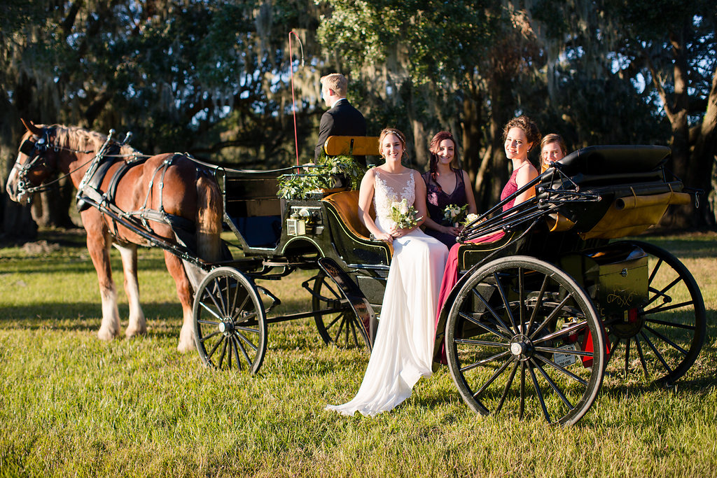 Bridal party in a black horse and carriage from Old South Carriage company  //  Sugah Cain Plantation on Johns Island, SC  //  Charleston wedding vendor
