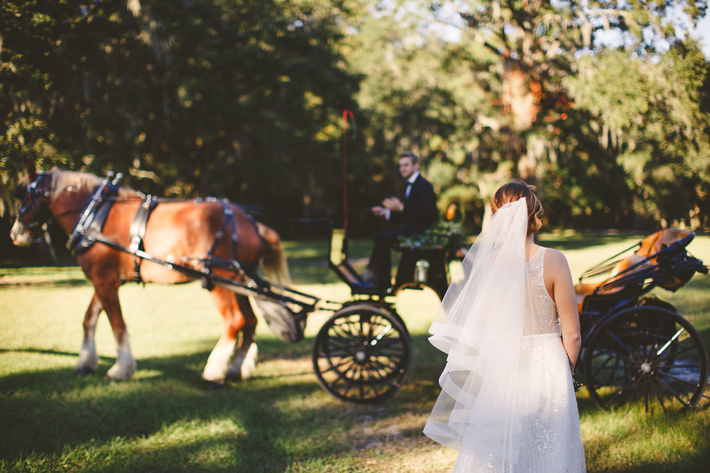Black horse and carriage from Old South Carriage Company at Sugah Cain Plantation  //  Charleston wedding vendor - Carolina Photosmith  Bride and her maids at Sugah Cain Plantation in front of white horse and Carriage  //  on A Lowocountry Wedding Magazine & Blog