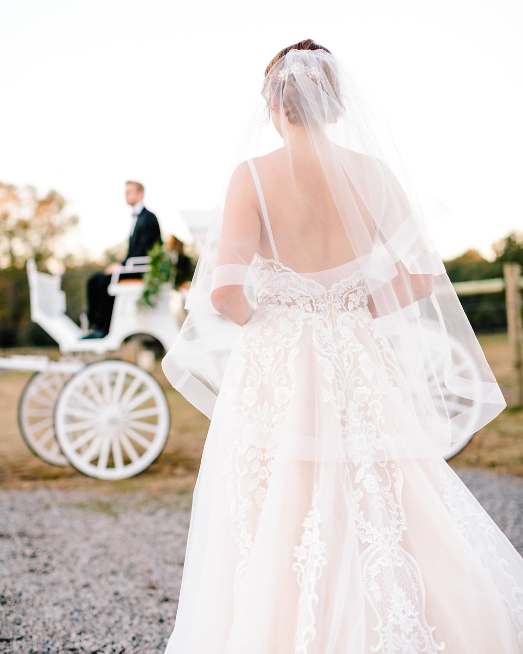 Back of gown from Verita Bridal Boutique at Sugah Cain Plantation  Bride and her maids at Sugah Cain Plantation in front of white horse and Carriage  //  on A Lowocountry Wedding Magazine & Blog