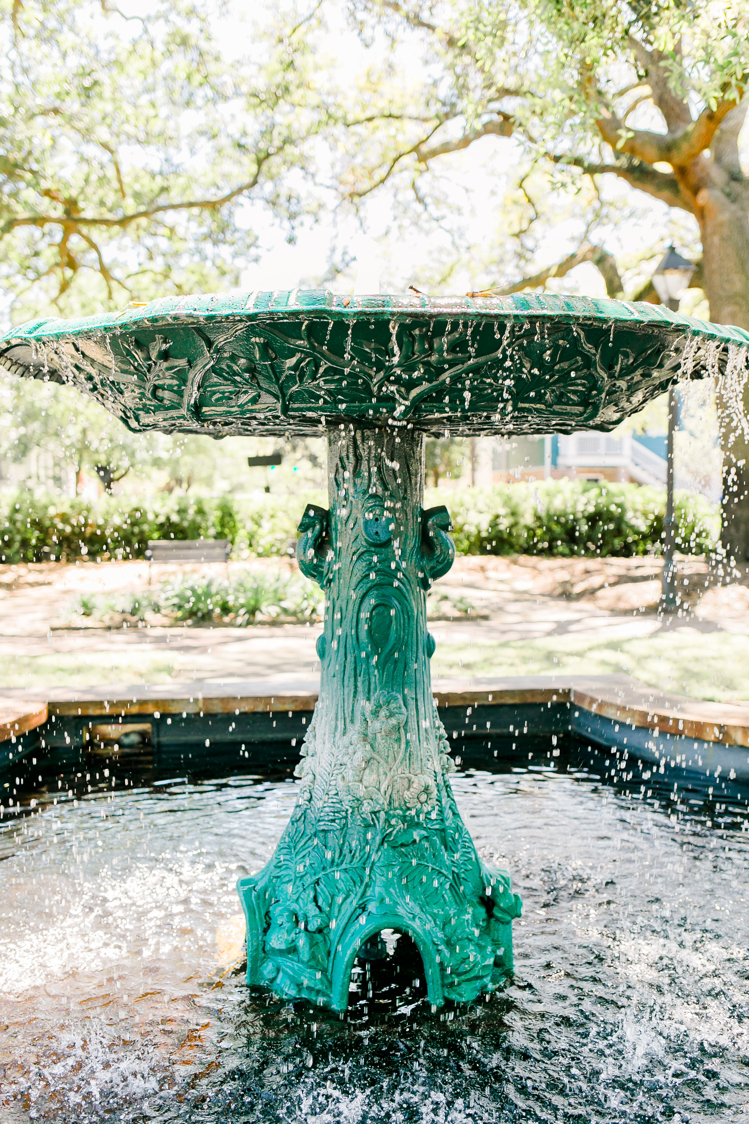 Forsyth Park Wedding ceremony in Savannah GA  //  A Lowcountry Wedding Magazine