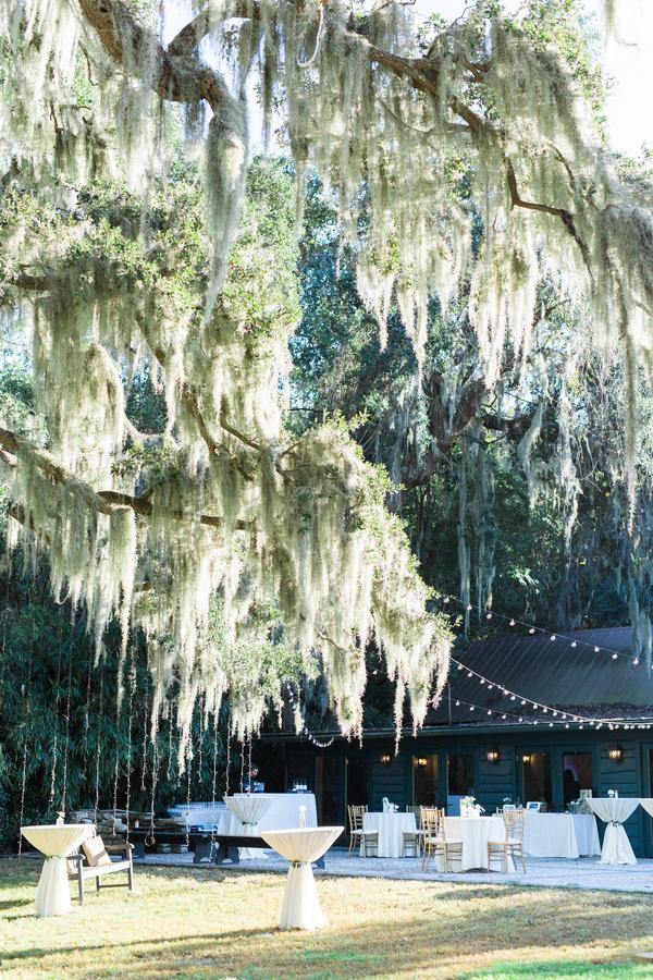 magnolia-plantation-wedding-30.jpg