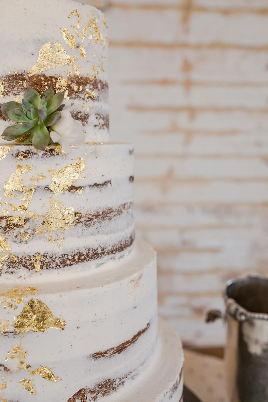 cedar-room-wedding-26.jpg