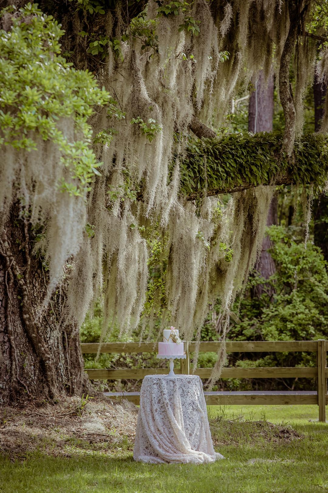 rose-hill-mansion-wedding-16.jpg