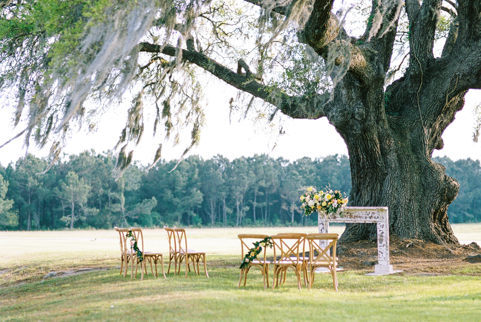 wingate-plantation-wedding-elopement-16.jpg