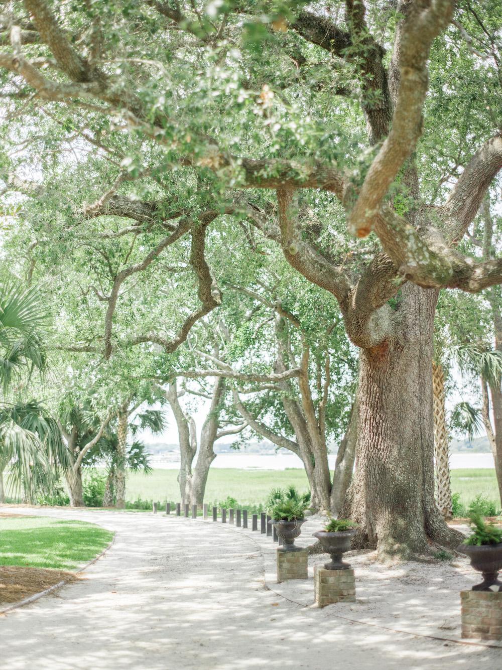 lowndes-grove-plantation-wedding-4.jpg