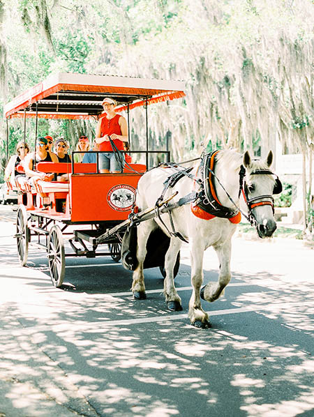 Horse & Carriage at Beaufort Inn wedding