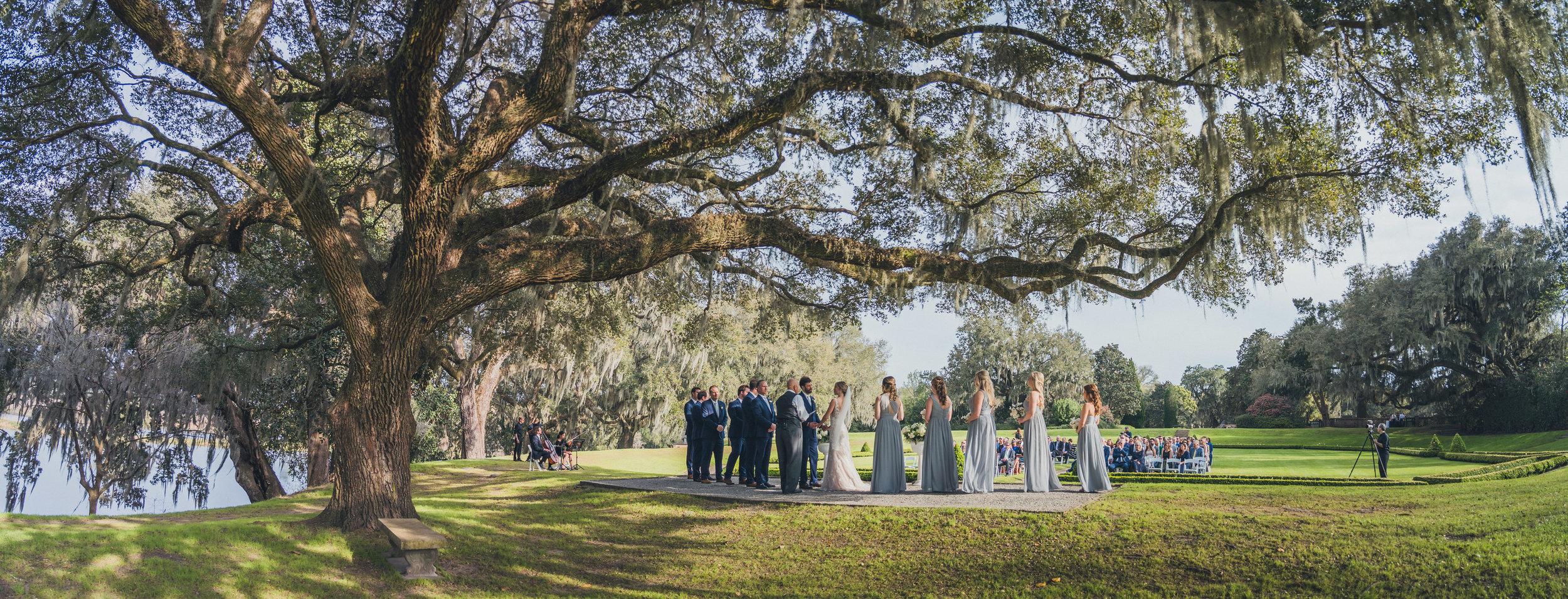 middleton-place-wedding-17.jpg