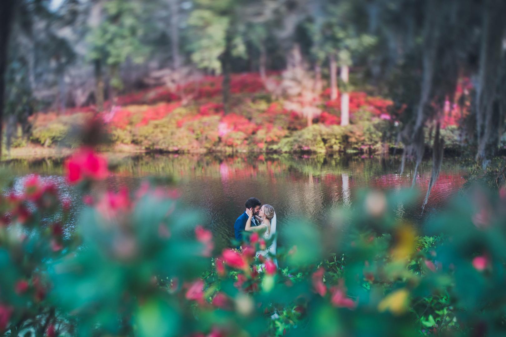 middleton-place-wedding-22.jpg