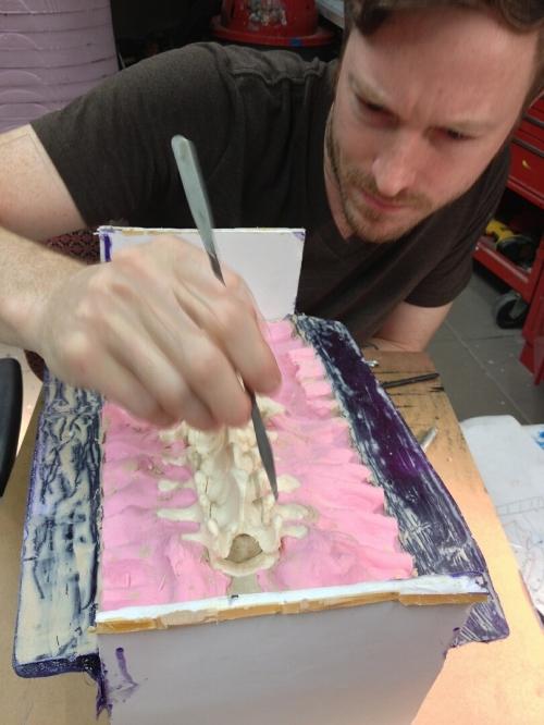 Molding a backbone