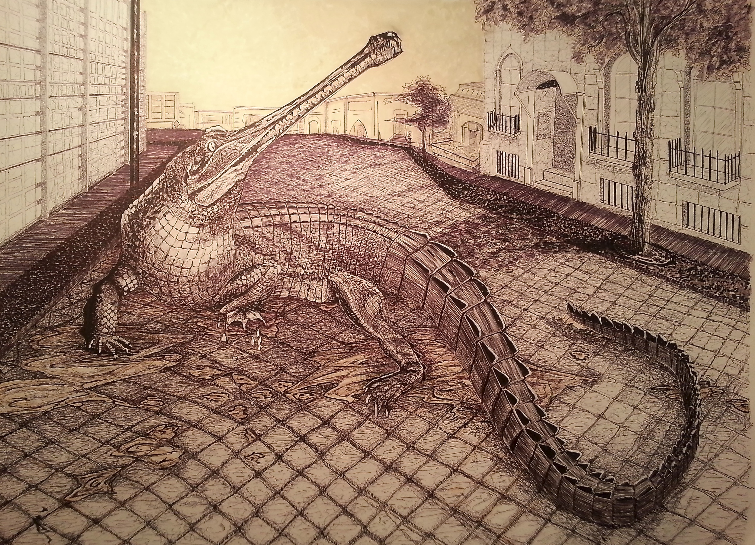 Gator Drawing.jpg