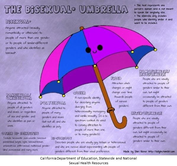 Image - Bisexual Umbrella 2-19.jpg