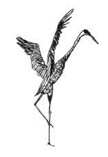 Dancing Crane left.png