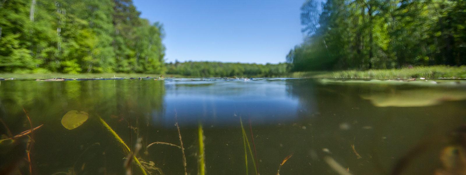 water-1600x600.jpg