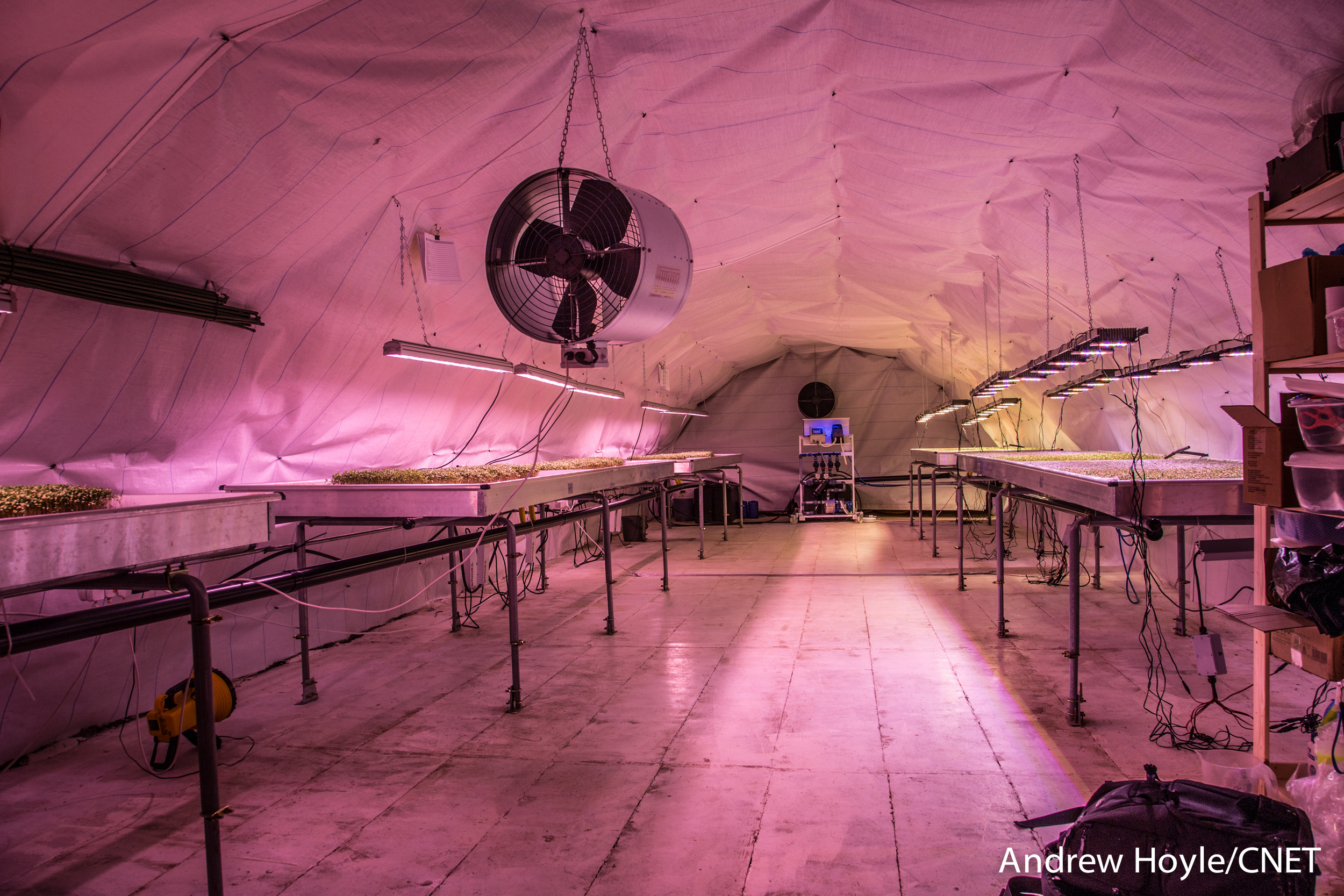 bomb-shelter-farm-london-26.jpg