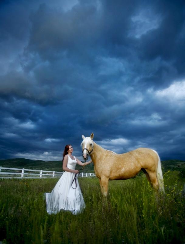 Equine Art 09