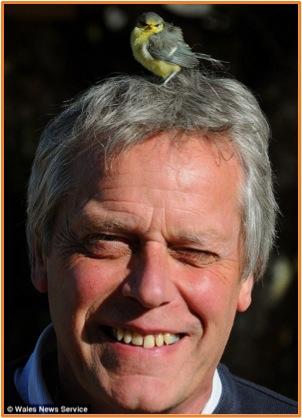 Bird in hair