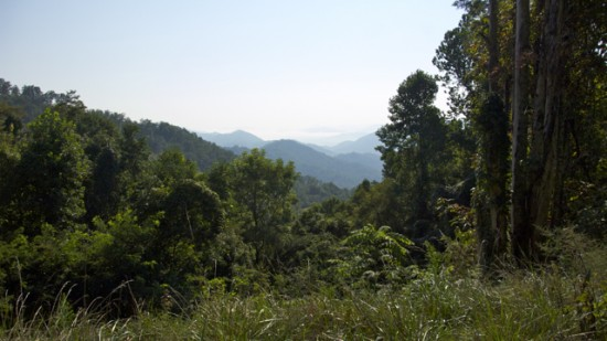 11 - Mountain Landscape