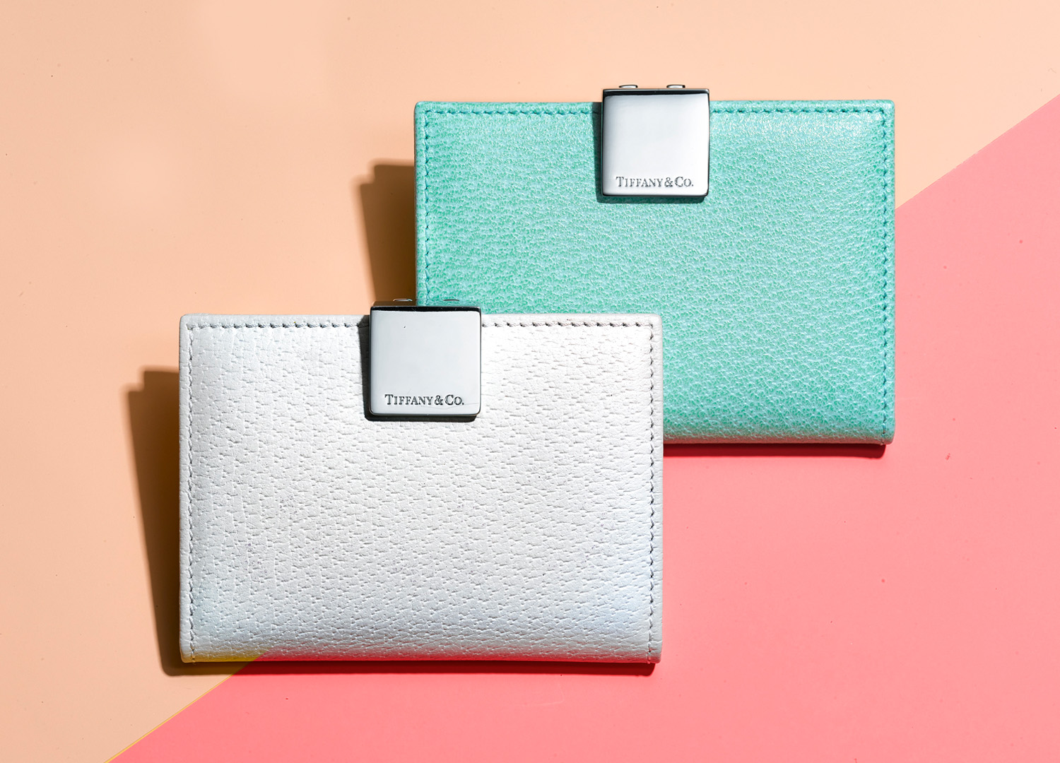 square_space_0002_3-8 Small Leather Goods Email_3_FPO.jpg