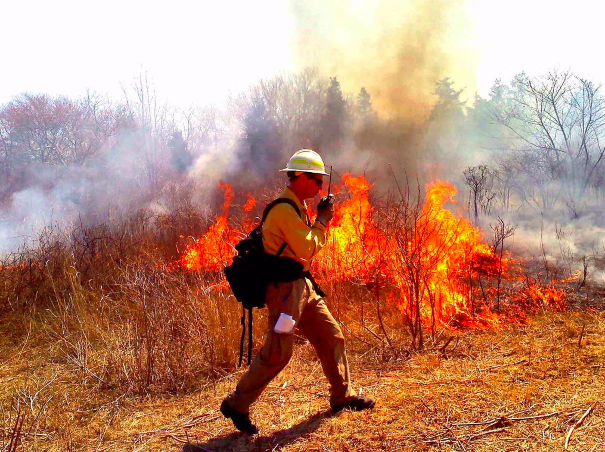 Dave Walker, Fire Managament Officer, monitors the burn. Taken on March 31, 2012 at Ninigret NWR. Photo Credit: Juancarlos Giese, USFWS