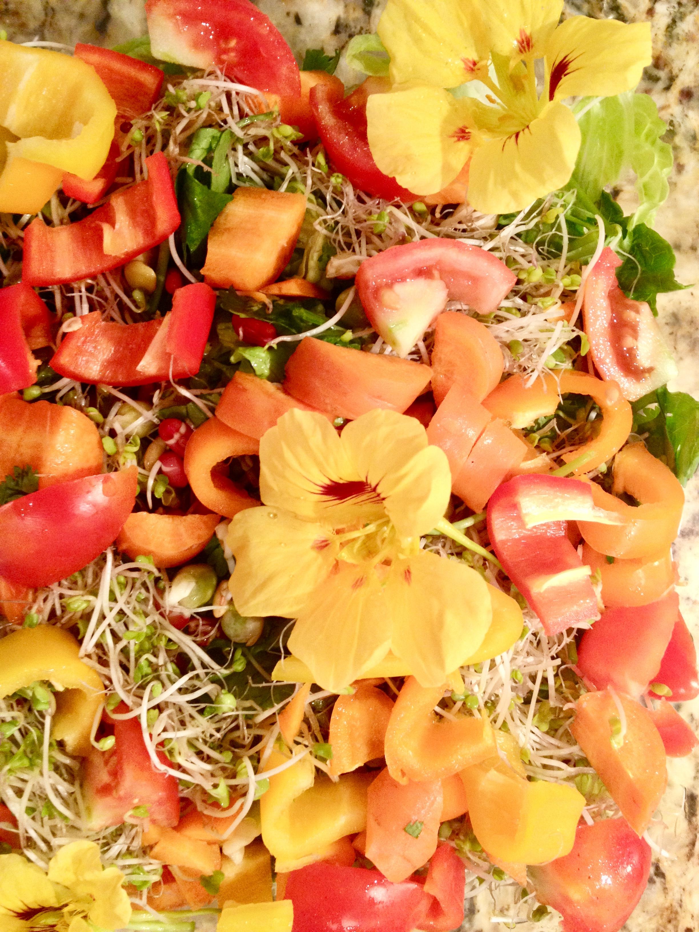 Colorful Salad.jpg