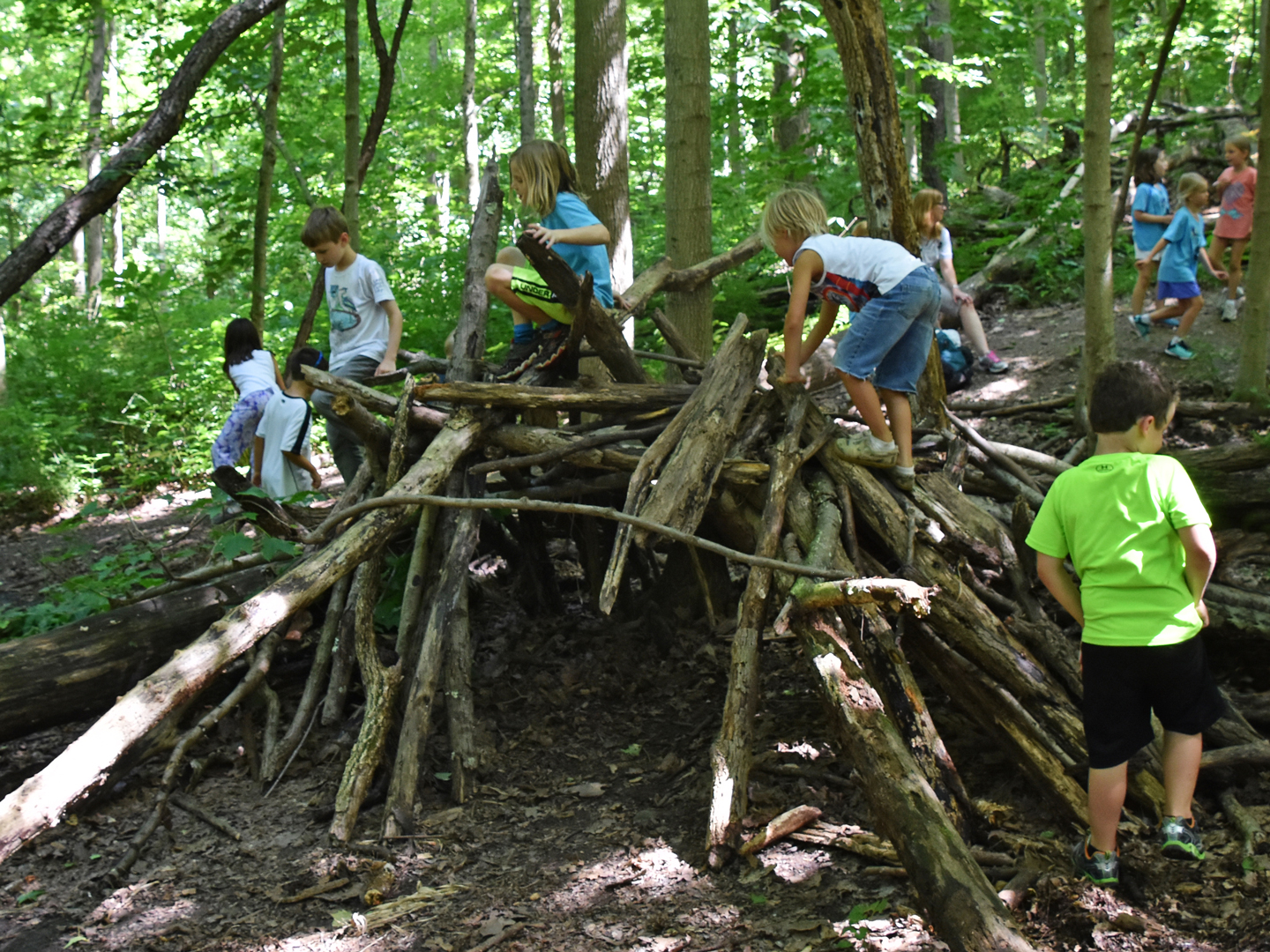 1080p_Camp-2017_kids-play-on-fort-in-natural-play-area_SHW_v-gordon.jpg