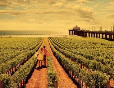 Wine-Auction.jpg