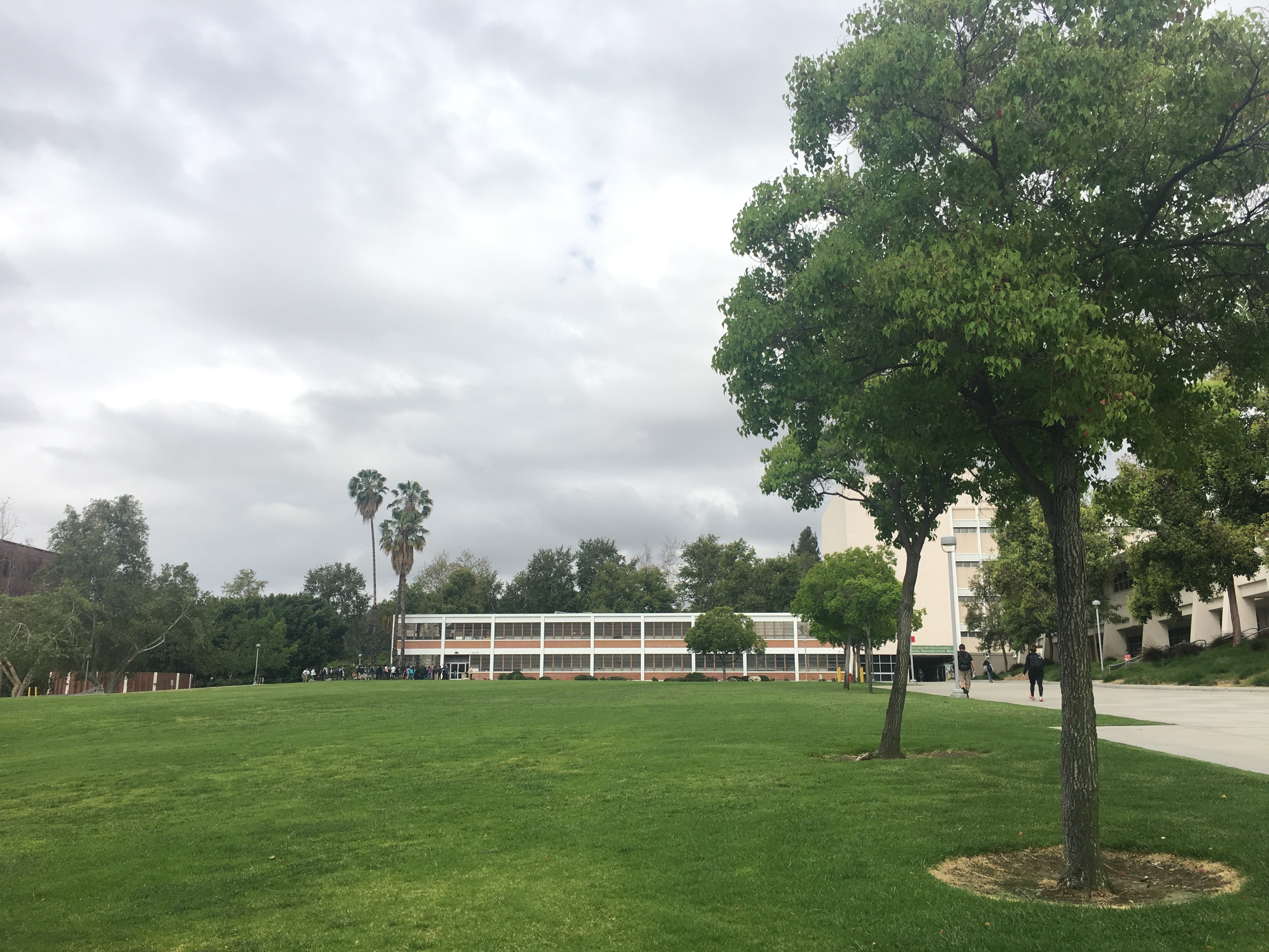The engineering building