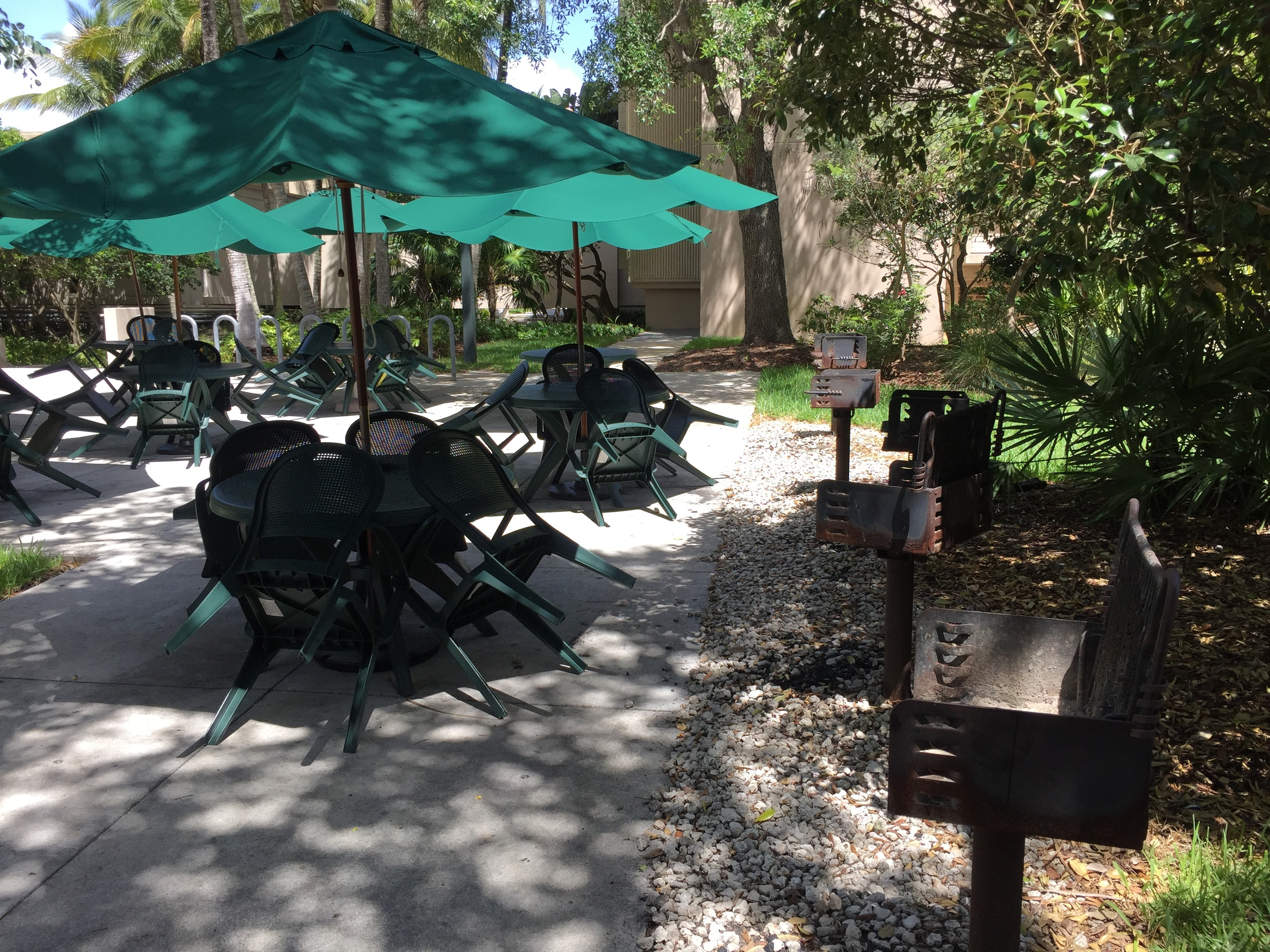 One of the many outdoor barbecue areas on campus